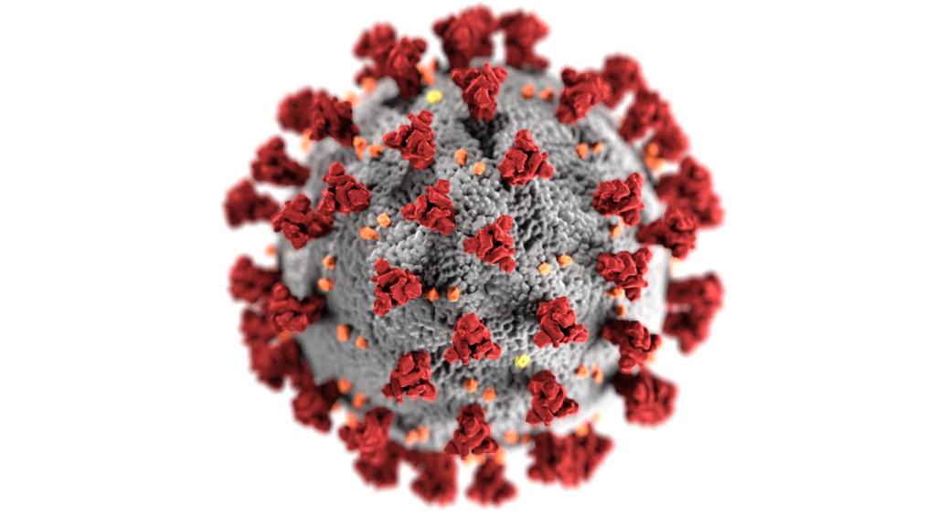 CDC image: COVID-19